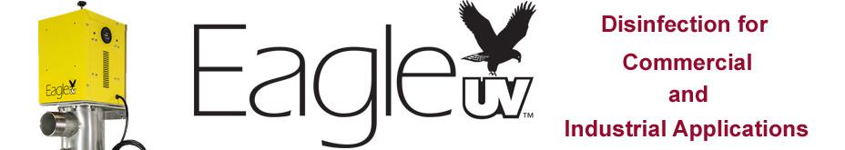 Eagle slide 2